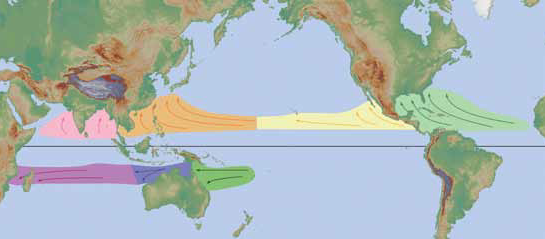Tropical Cyclone Formation Regions With Mean Tracks Courtesy Of The Nws Jetstream Online School